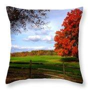 Oh Beautiful Tree Throw Pillow