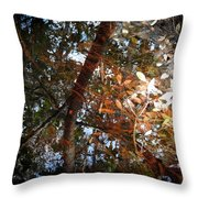 Oh Black Water... Throw Pillow