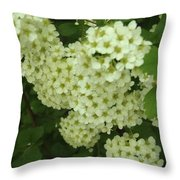 Oh, Happy Day Throw Pillow