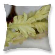 Oh So Small Oak Leaves Throw Pillow