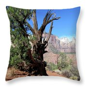 Oh The Things I Have Seen Throw Pillow