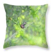 Oh The Webs We Weave Throw Pillow