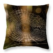 Oh What Tangled Webs.... Throw Pillow