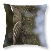 Oh What Webs We Weave Throw Pillow
