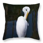 Oh Yea Thats The Spot Throw Pillow