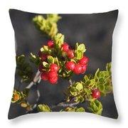 Ohelo Berries Throw Pillow