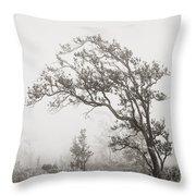 Ohia Lehua Tree Throw Pillow