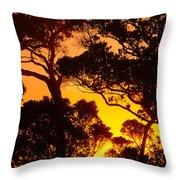 Ohia Trees At Sunset Throw Pillow