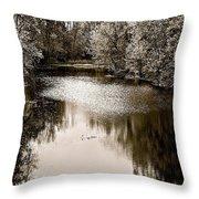 Ohio Autumn Bw Throw Pillow
