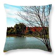 Ohio Duck Pond Throw Pillow
