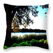 Ohio Pond Throw Pillow