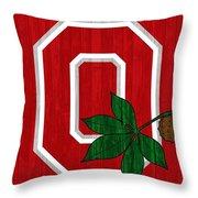 Ohio State Wood Door Throw Pillow