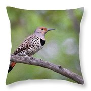 Oil Painted Northern Flicker Throw Pillow
