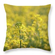 Oilseed Rape Throw Pillow