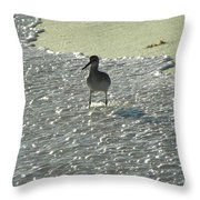 Standing In The Wave Throw Pillow