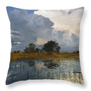 Okavango Delta Evening Throw Pillow