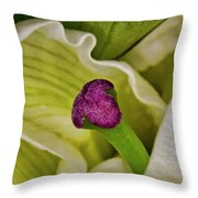 O'keeffe's Muse Throw Pillow