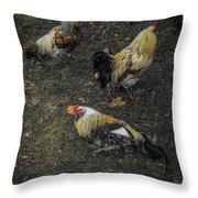 Okemos Public Chicken Throw Pillow