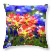 Oklahoma Wildflowers Throw Pillow