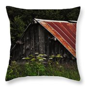 Old Alaskan Shed Throw Pillow