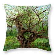 Old Apple Tree Throw Pillow