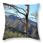 Old Aspen Throw Pillow