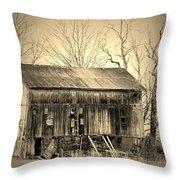 Old Barn-1 Throw Pillow