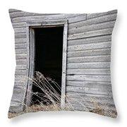 Old Barn 2 Throw Pillow