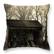 Old Barn-4 Throw Pillow