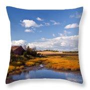 Old Barn On Salt Marsh Edge #2 Throw Pillow
