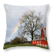 Old Barn Rainbow Throw Pillow