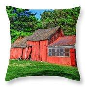 Old Barn Ridge Li.ny Throw Pillow