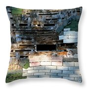 Old Barn Roof With Bird Throw Pillow