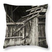 Old Barn Ruin 3 Throw Pillow