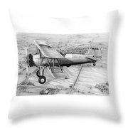 Old Bi Plane Throw Pillow