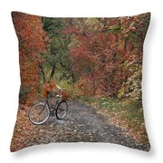 Old Bike In Autumn Throw Pillow