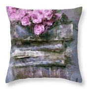Old Books And Pink Roses Throw Pillow