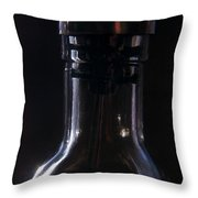Old Bottle Throw Pillow