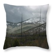 Old Burn In Spring Throw Pillow