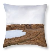 Old  Church In Hellnar, Snaefellsnes Peninsula, Iceland Throw Pillow