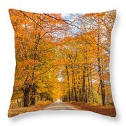 Old Coach Road Autumn Throw Pillow