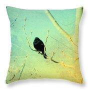 Old Crow Medicine Show Throw Pillow