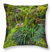 Old Disused Quarry Throw Pillow