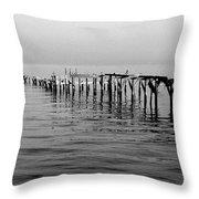 Old Dock  Throw Pillow