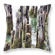 Old Dock Remains Throw Pillow