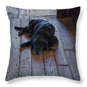 Old Dog Old Floor Throw Pillow