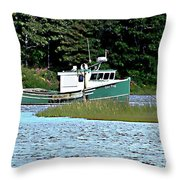 Old Dog On Bass River Throw Pillow