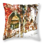 Old Doors Of The Houses Of The Village Throw Pillow
