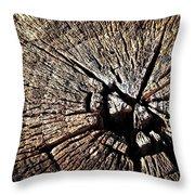 Old Dry Stump Throw Pillow