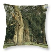 Old Elms In Prater Throw Pillow by Ferdinand Georg Waldmuller